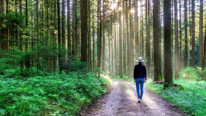 Nature Path - Top 5 Ways to Reduce Anxiety